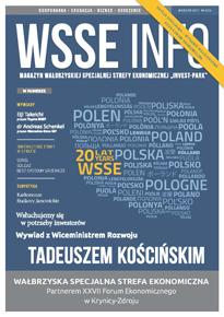 WSSE INFO 3-13 PL okladka